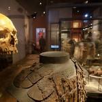 Massakern vid muren 1361 - Hur kunde det gå så fel?
