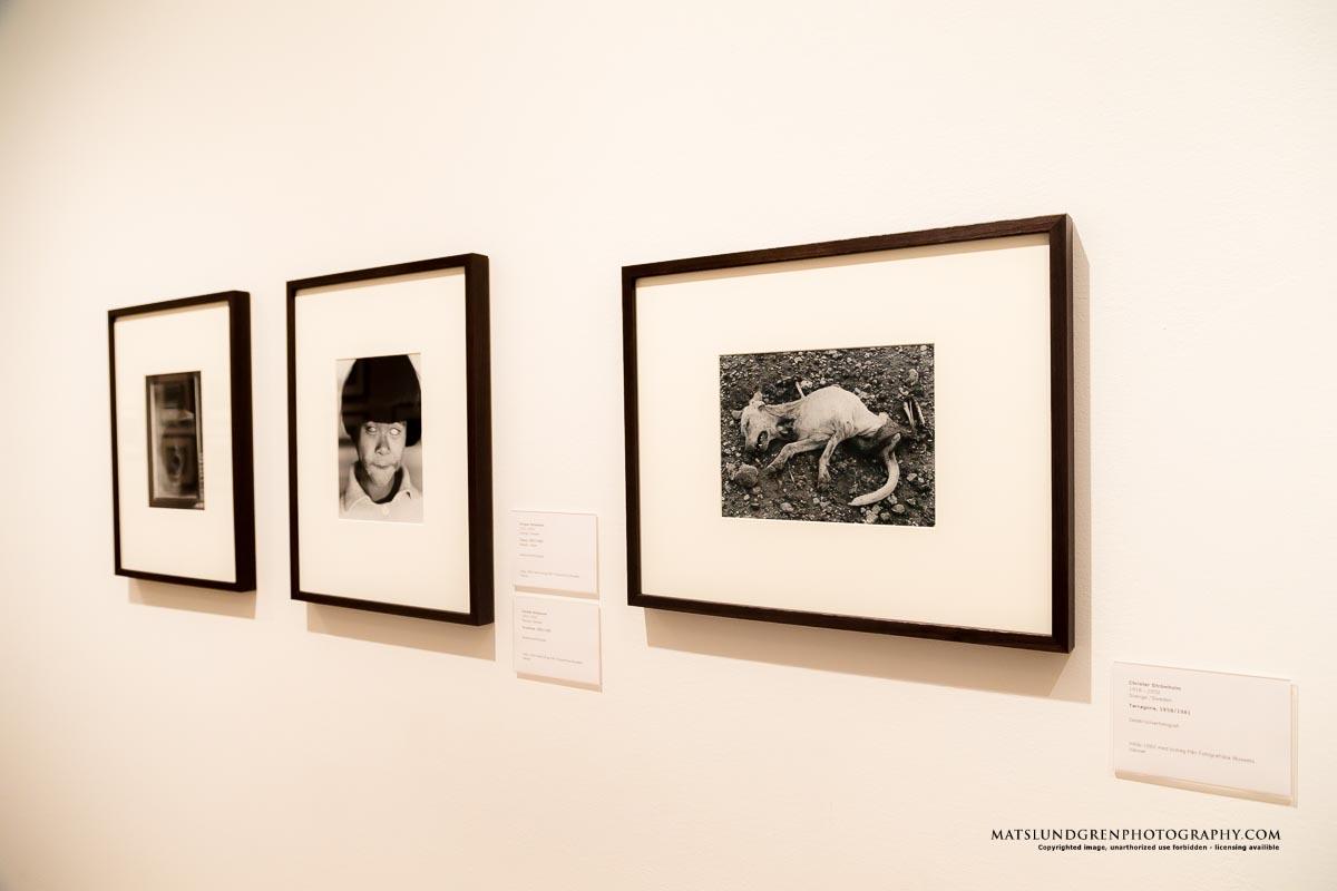 Christer Strömholm i gott sällskap på Moderna Museet