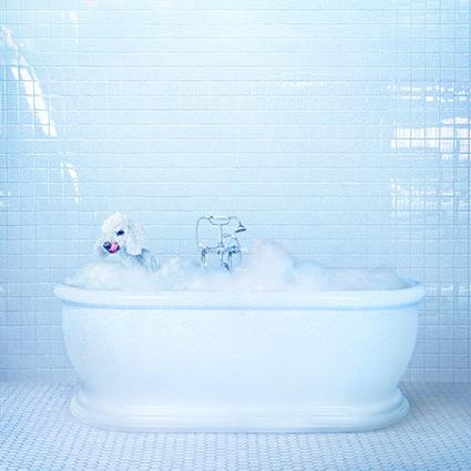 Frankie Cosmos 'Vessel' recenseras - Formidabel totalromantik